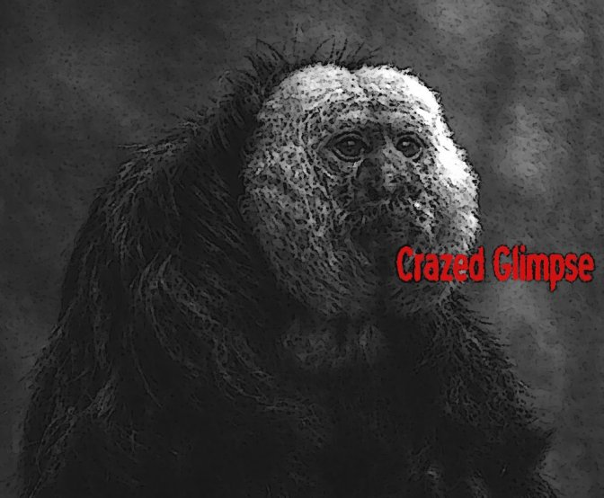 Cyborg Gorilla From Hell (2)