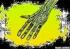 HandTitlecard1-1