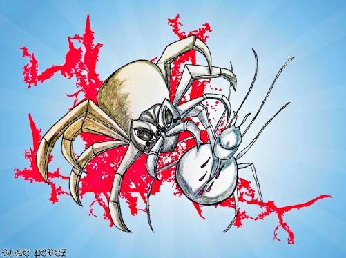 SpidervsSpiderIllustration-1